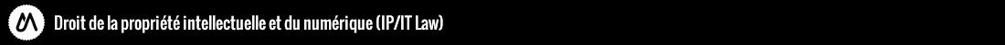 Master Créations Immatérielles Logo